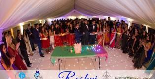 Roshni article picture